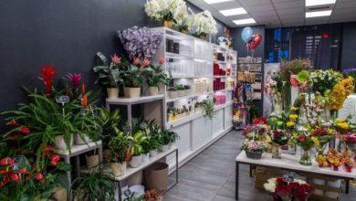Photo of Бизнес-план Цветочный салон